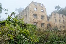 Ruine Landskron - Bild Nr. 201409063638