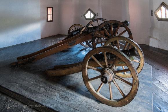 Pfalzgrafenstein: Kanonen - Bild Nr. 201409271347
