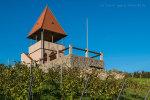 Schildbergturm bei Sulzheim - Bild Nr. 201410181495