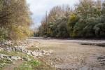 Niedrigwasser an der Rheininsel Kieselwörth - Bild Nr. 201511154958