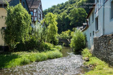 Der Elzbach in Monreal - Bild Nr. 201608074927