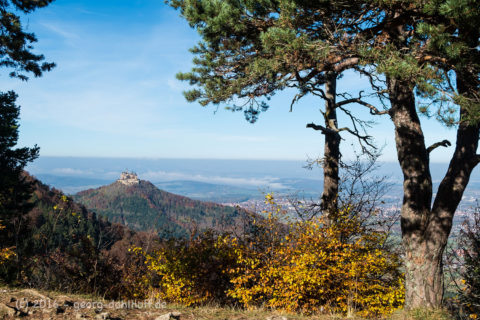 Hohenzollernblick, Nähe Raichbergturm - Bild Nr. 201610315484